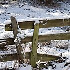 Winter Morning fence by madman4