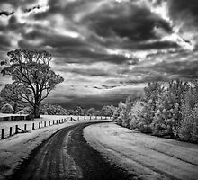 Country Road by Annette Blattman