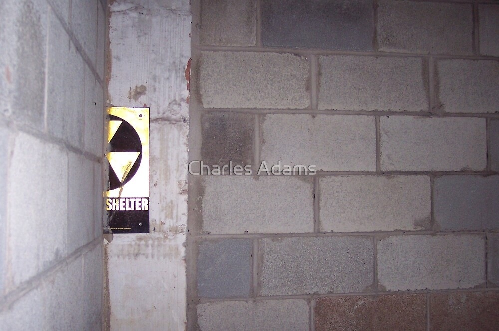 Fall Out Shelter by Charles Adams