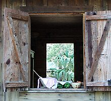 The Kitchen Window by Judy Gayle Waller