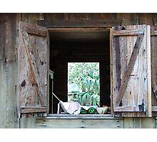 The Kitchen Window Photographic Print