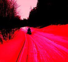 NC snow daze by Albert1000