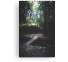 The road back is always the hardest Canvas Print