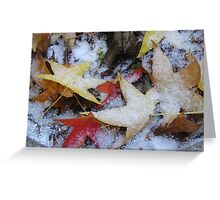 First Snowfall of the Year Greeting Card