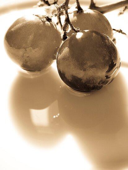 Grapes by Jean-François Dupuis