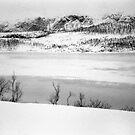 winter landscape by Daphne Kotsiani