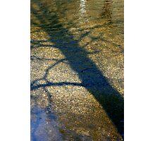 Tree Shadow, River Wharfe Photographic Print