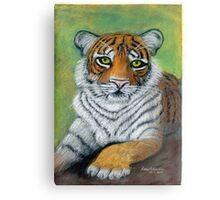 Tiger paw Canvas Print