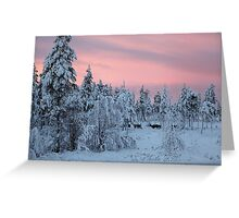 Winter sunrise in Lapland Greeting Card