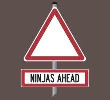 Ninjas Ahead by Bryan Davidson