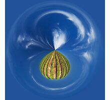 A Delicate Balance Photographic Print