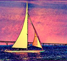 Sail Newport Red by Ed Immar