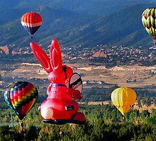 Balloon Festival by Stevej46