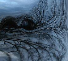 black and blue by Linda Sannuti