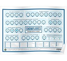 The Shapes of Snowflakes Poster