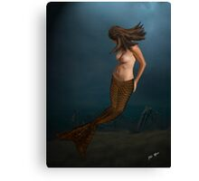 A Backward Look Canvas Print