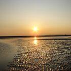 Evening sun by ClaireTiltman