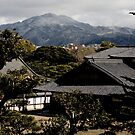 View from Nijo Castle, Kyoto by AquaMarina
