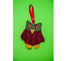 Cute owl decoration Photographic Print
