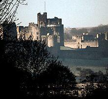 Alnwick castle  by Arthur Chambers