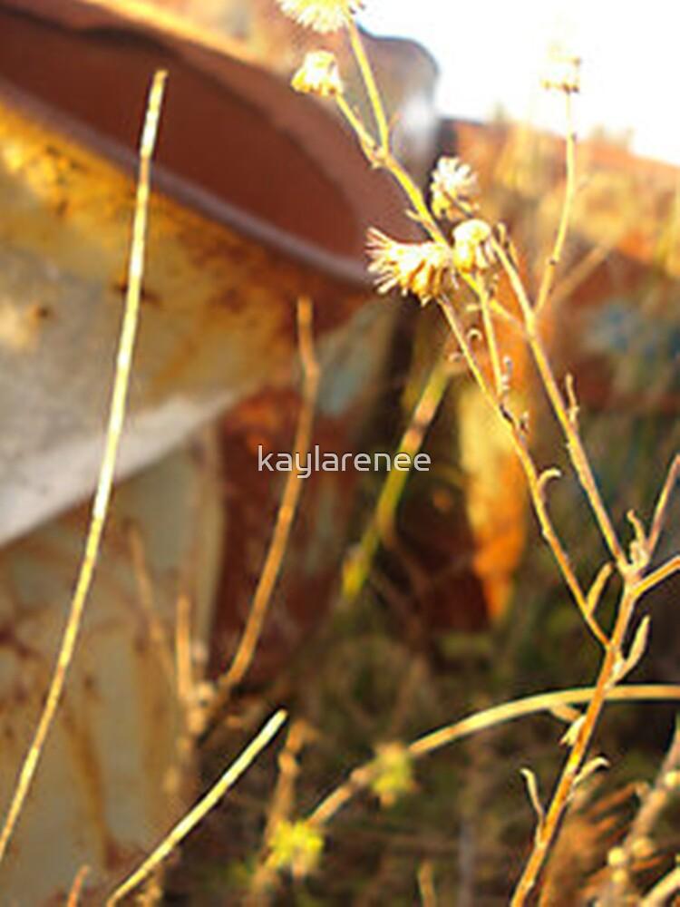 Weeds by kaylarenee