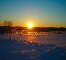 Silver Lining in Winter by Cathy Klima