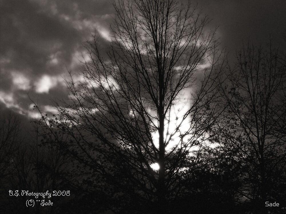 DULL SUNSET by Sade