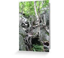 The Notch Greeting Card