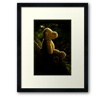 If You Go Down To The Woods Today!... Framed Print