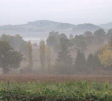 A misty dawn in Normandy, France by eeek