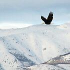 Flying On The Snowy Peaks by loriclint