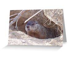 Mama Groundhog Greeting Card