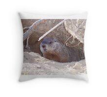 Mama Groundhog Throw Pillow