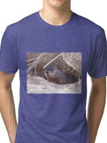Mama Groundhog Tri-blend T-Shirt