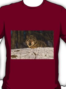 Sunrise Wolf T-Shirt