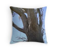 A typical aussie tree Throw Pillow