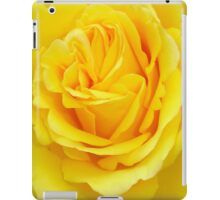 Beautiful Yellow Rose Closeup  iPad Case/Skin