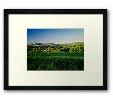 Cornfield Framed Print
