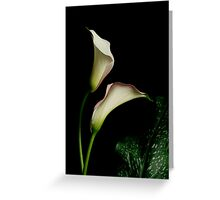 Dance of the Calla Greeting Card