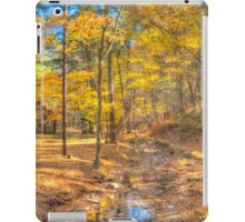 Golden Walks iPad Case/Skin