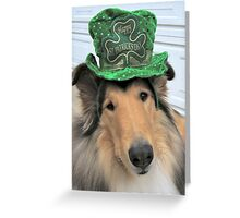 St. Patrick Rough Collie Greeting Card