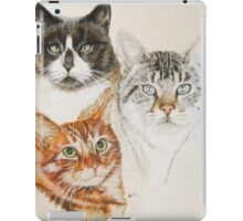 American Shorthair iPad Case/Skin