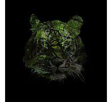 Tiger Spirit forrest Photographic Print