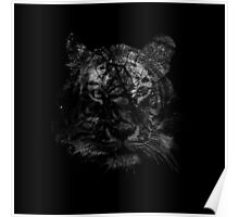Tiger in black and white Poster