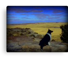 Kali at the Painted Desert Canvas Print
