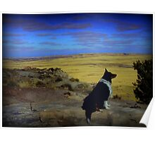 Kali at the Painted Desert Poster