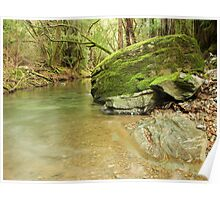 Mill Creek Poster