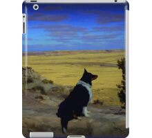 Kali at the Painted Desert iPad Case/Skin