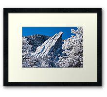 The Third Flatiron - Through The Trees Framed Print