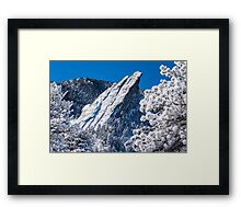 The Third Flatiron - Through The Trees Framed Print